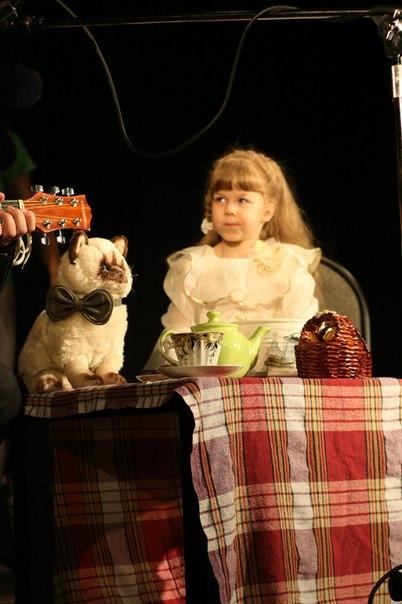 Томск: На благотворительном концерте для животных собрали около 20 тысяч